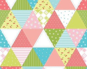 Riley Blake Glamper Cheater Cotton Quilting Fabric Green