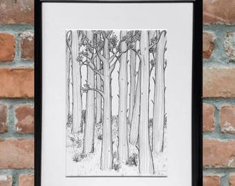 wall art, black and white art, gifts for nature lovers, gifts for him, simple art, pen and ink, original art, line drawing
