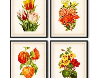 Botanical, Flower printable, Botanical print, Wall art vintage, Set of 4 prints, llustration set, Printable set, Tulip, 8x10, 11x14, JPG