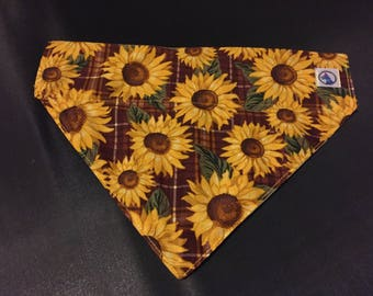 Fall Flowers Reversible Bandana