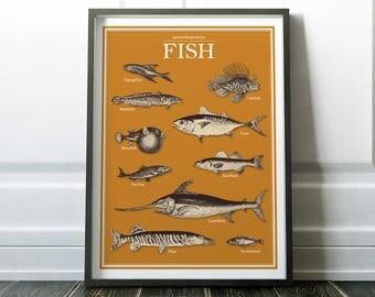 Fish Print, Fish Art, Diagram Prints, Fish Poster, Minimalist Wall Art, Minimalist Print, Modern Art, Wall Art Prints, Minimalist Art Prints