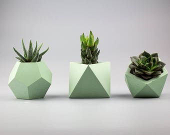 Set of 3 Concrete planters, Succulent planter, Concrete planters, Geometric planter, Air plant holder, Small concrete planter, Concrete Vase
