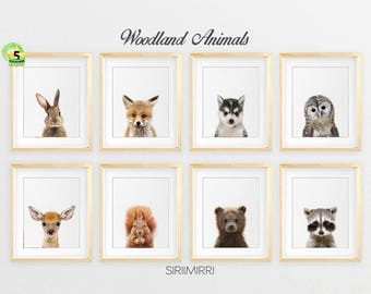 Woodland Nursery Decor, Baby Animals Set 8 Bunny Rabbit Fox Raccoon Owl Deer, Nursery Prints Modern Woodland Animals Art Kids Room Printable