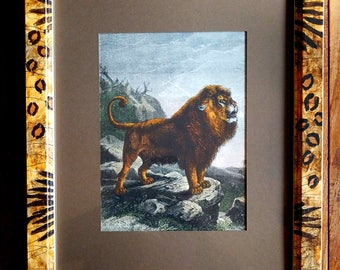 Lion Print by Friedrich Specht, Friedrich Specht, Wildlife Art, Lion Print