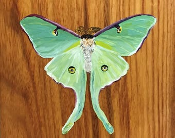 Original Luna Moth Oil Painting on Canary Wood