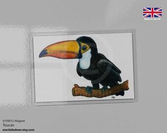Cartoon Toucan Magnet 9.5cm x 6.5cm, print of watercolour pencil drawing, toucan exotic bird art