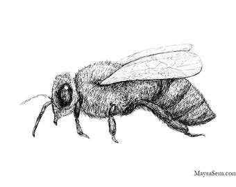 Bee - Art Print