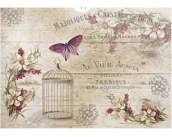 1 sheet of 21 x 28 cm old ACACIA 1186 collage decoupage rice paper