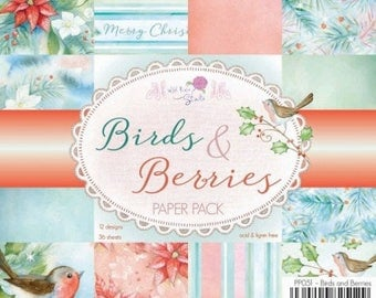 two pockets 15.2 36 papers x 15.2 cm WILD pink BIRDS AND BERRIES