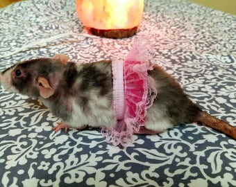Rat and ferret tutu  - rat clothes, rat cage, pet rat, rat accessories, tutu, ferret, ferret tutu, rat hammock ferret hammock