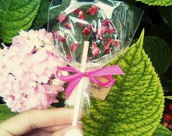 Wedding Party Raspberry Lollipop set