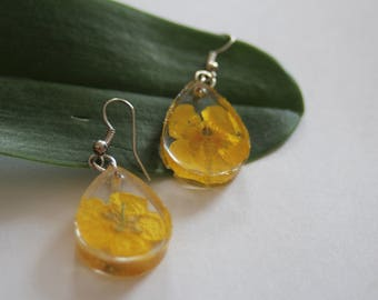 Real Natural Buttercup Flower Resin Silver Dangle Earrings Handmade Jewellery nolaOrchid