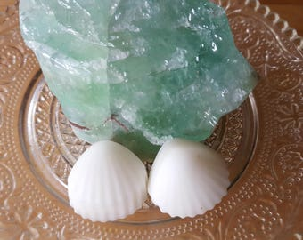 Ocean Sea Shells Wax Melts-2 pack