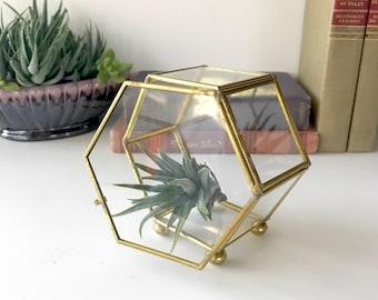 Vintage Glass Display Case, Jewelry Box, Brass Trim, Curio Cabinet, Jewelry Case, Display Box, Trinket Box, Glass Box, Glass Case, Terrarium