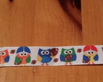 Owls football pacifier