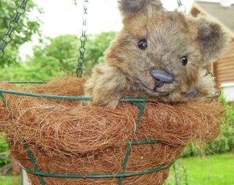 Little teddy bear Klaus