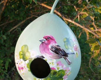 Hand Painted Gourd Birdhouse with flowers and bird