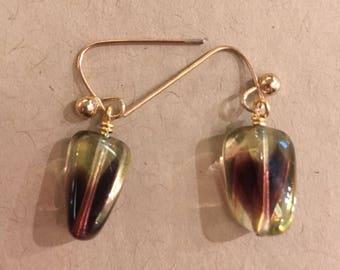 Yellow/purple bicolour earrings