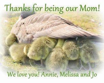 Mother's Day personalized gift,  printable download, customized printables, goslings photo, gosling picture, wildlife images, bird decor