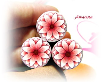 Polymer clay flower cane: Raw polymer clay cane - Millefiori cane supplies - White and pink flower cane - Supplies for jewelers