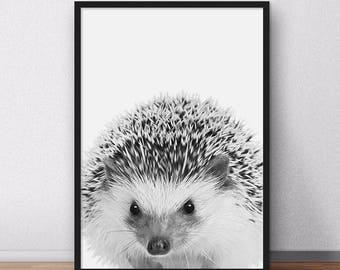 Sale!!! Hedgehog Print, Woodlands Baby Animal Nursery Wall Art, Printable Decor, Woodlands Hedgehog, Black and White Nursery Print
