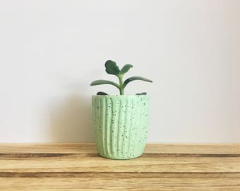 Mint Green & White Succulent Planter, Ceramic Succulent Planter, Ceramic Cup, Planter, Succulent Pot, Pottery