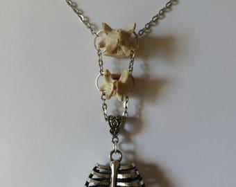 Rodent Vertebrae necklace