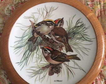 WWF Songbirds of Europe by Ursula Band - Firecrest display plate 1986