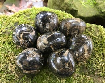 """Stromatolite ~ Large Tumbled stones  ~ 1.2"""" - 1.7"""""""