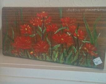 Missouri Wildflower - Indian Paint
