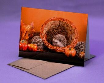 BABY HEDGEHOG CARD Thanksgiving - Thanksgiving Hedgehog Card - Baby Hedgehogs Card for Thanksgiving - Happy Thanksgiving Hedgehog Card