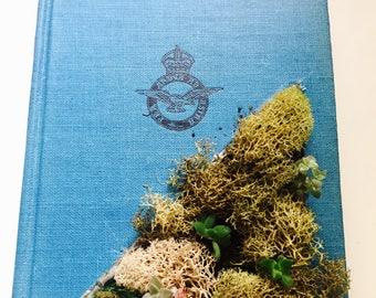 "Live Succulent Book Planter ""Thunderbirds"""