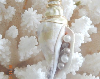 Seashell Pendant adorned with Pearls