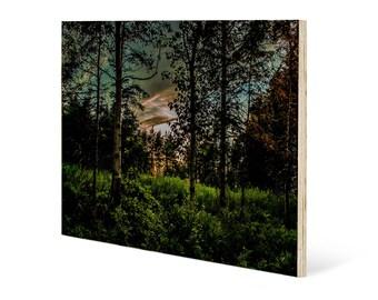 Mystic woods landscape wall art, printed on maple wood panel