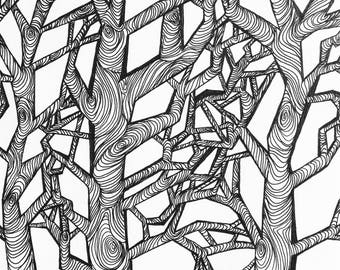 Oak Tree 7