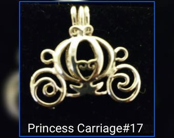 Princess carriage cage