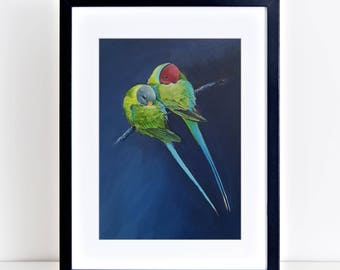 Plum headed Parakeets. Signed limited edition (100) 325gm fine art print by Griff