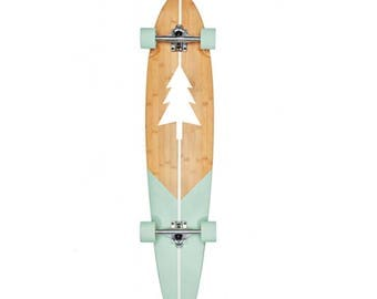 Longboard skateboard - custom pintail blue cruiser