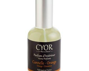 SCENT of cinnamon-Orange Interior
