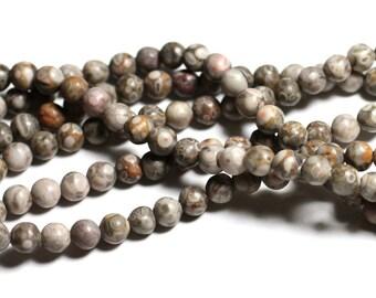 1 strand - stone beads - 39cm Ocean fossil Jasper 6mm balls