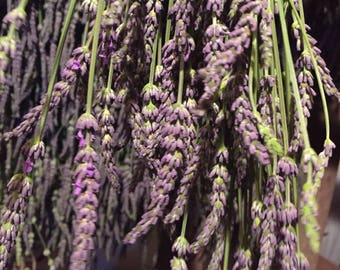 """Dried Lavender Bundle 14"""" stems, dried lavender for bouquets, crafts, and weddings"""