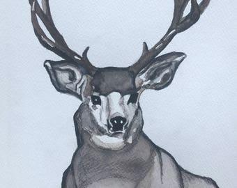 Mule Deer, Original Watercolor Painting