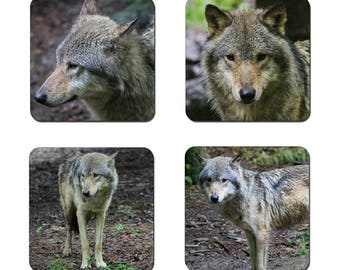 Set of 4 Wolf drinks coasters featuring award winning photography by UniquePhotoArts.