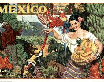 SET of TABLE semi-rigid, original, plastic, washable and durable - vintage poster / travel to the Mexico.