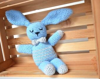 Blue Bunny made technique amigurumi