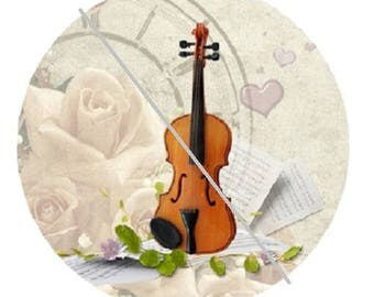 25mm, music, violin, and white rose