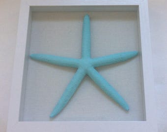 "9"" Aqua Starfish in White Shadowbox Frame"