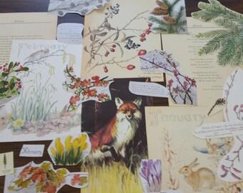Winter Collage Pack, Winter Paper Ephemera, 20+ pieces paper pack, Paper ephemera lot, junk journal pack, theme paper lot