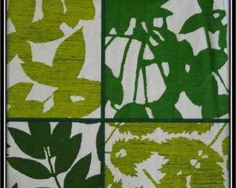 dark green foliage paper towel