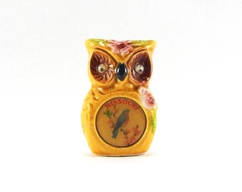 Vintage Toothpick Holder / Owl Toothpick Holder / Missouri Souvenir / Owl With Googly Eyes / Kitschy Kitsch